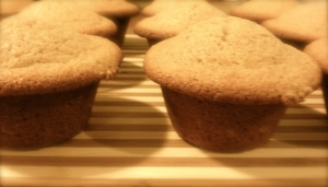 honey_whole_wheat_muffins